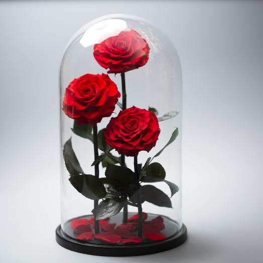 "Композиция ""Трио XXL"": букеты цветов на заказ Flowwow"