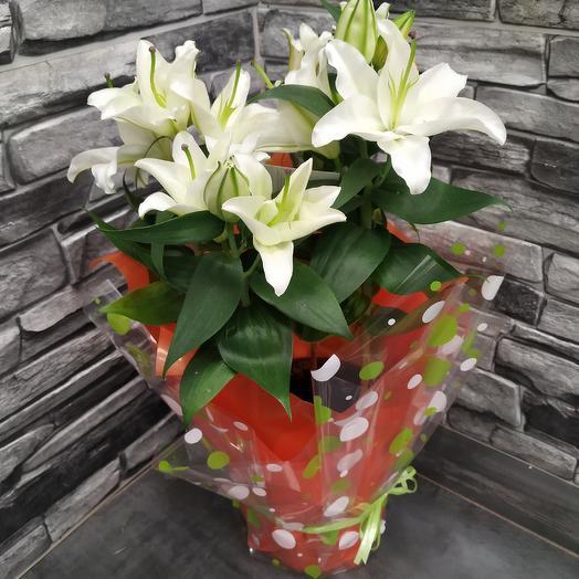 Ароматные белые лилии в горшке с оформлением: букеты цветов на заказ Flowwow