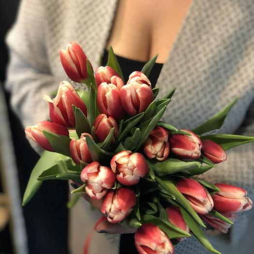 Тюльпан mon amore 19