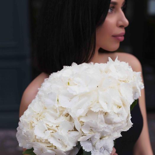 Букет из 5 гортензий: букеты цветов на заказ Flowwow