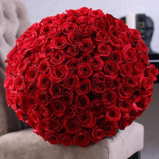 Роза 101 красная