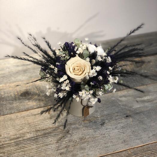 Сухоцветы Нуар