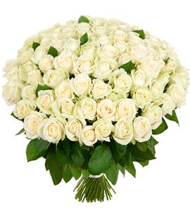 Белые розы оренбург
