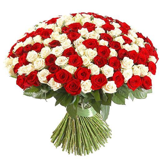 Букет из 111 разноцветных голландских роз 70 см: букеты цветов на заказ Flowwow