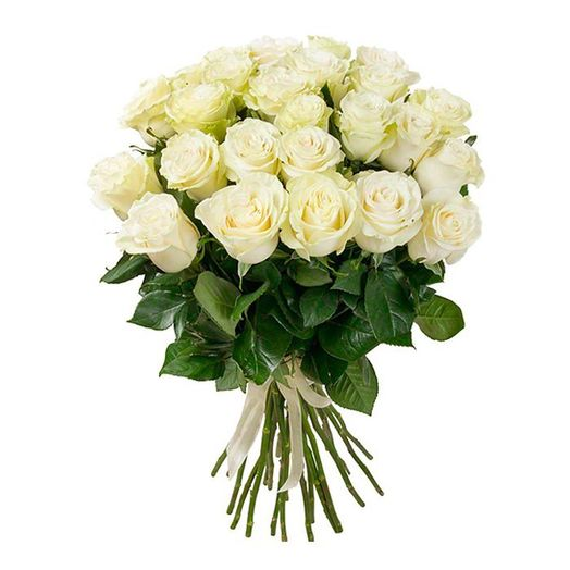 Букет из 25 белых голландских роз 60 см: букеты цветов на заказ Flowwow