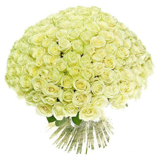 Букет из 151 белой голландской розы 50 см: букеты цветов на заказ Flowwow