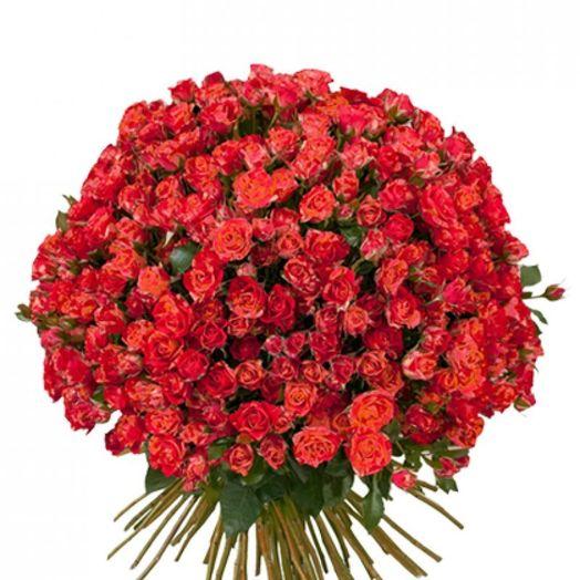 Букет из 101 красной кустовой розы 50 см: букеты цветов на заказ Flowwow