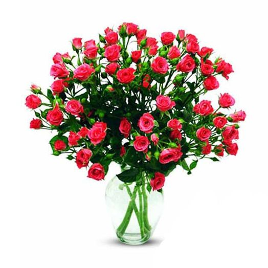 Букет из 11 красных кустовых роз 60 см: букеты цветов на заказ Flowwow