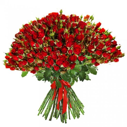 Букет из 55 красных кустовых роз 60 см: букеты цветов на заказ Flowwow