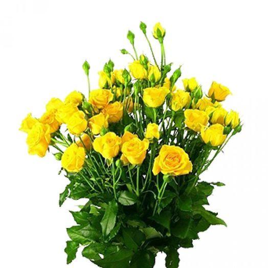 Букет из 11 желтых кустовых роз 60 см: букеты цветов на заказ Flowwow