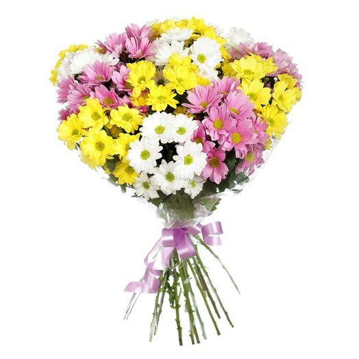 Букет из 15 разноцветных хризантем: букеты цветов на заказ Flowwow
