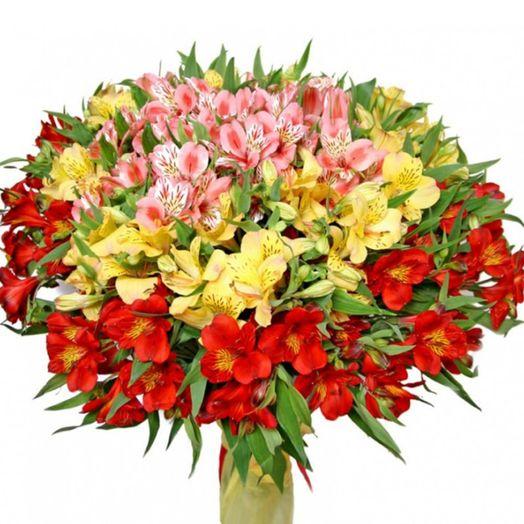 Букет из 101 разноцветной альстромерии: букеты цветов на заказ Flowwow