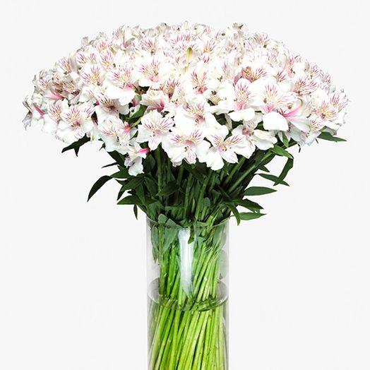 Букет из 101 белой альстромерии: букеты цветов на заказ Flowwow