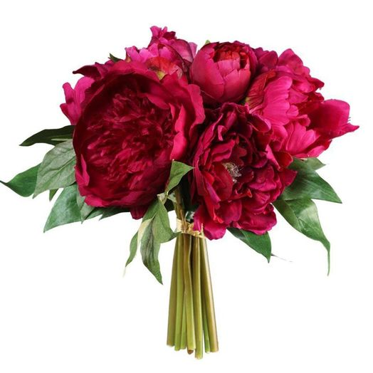 Букет из 10 красных пионов: букеты цветов на заказ Flowwow