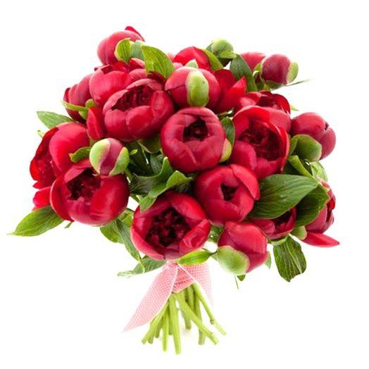 Букет из 19 красных пионов: букеты цветов на заказ Flowwow