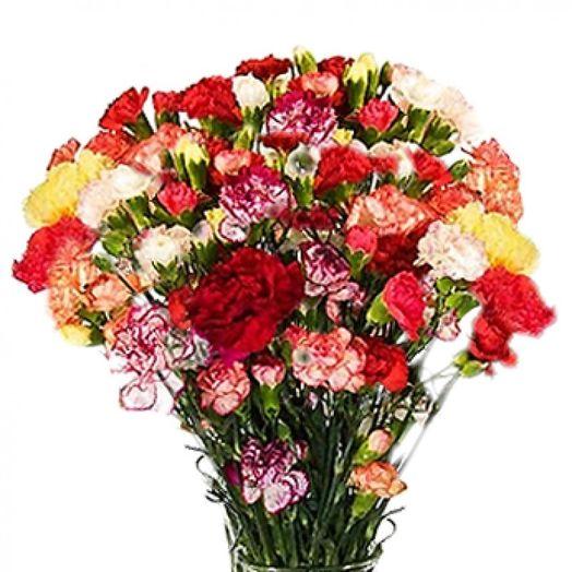 Букет из 101 разноцветной гвоздики: букеты цветов на заказ Flowwow