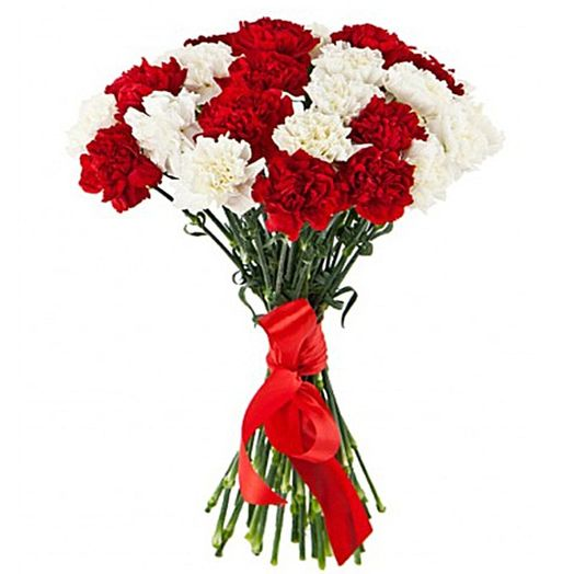 Букет из 15 разноцветных гвоздик: букеты цветов на заказ Flowwow