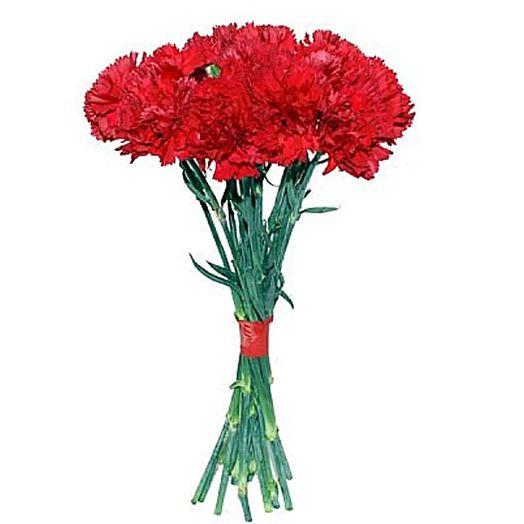 Букет из 25 красных гвоздик: букеты цветов на заказ Flowwow