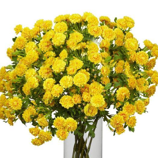 Букет из 101 желтой гвоздики: букеты цветов на заказ Flowwow