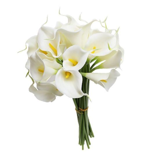 Букет из 7 белых калл: букеты цветов на заказ Flowwow