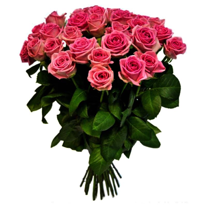 Букет из 21 розовой местной розы 60 см: букеты цветов на заказ Flowwow