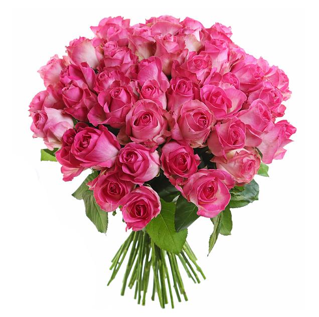 Букет из 35 розовых голландских роз 60 см: букеты цветов на заказ Flowwow