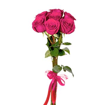 Букет из 7 розовых голландских роз 50 см: букеты цветов на заказ Flowwow