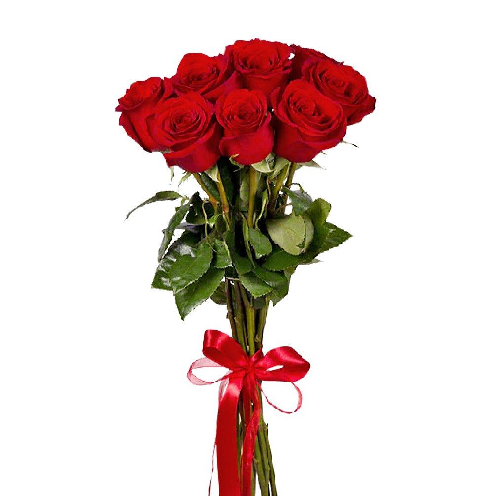 Букет из 7 красных голландских роз 60 см: букеты цветов на заказ Flowwow