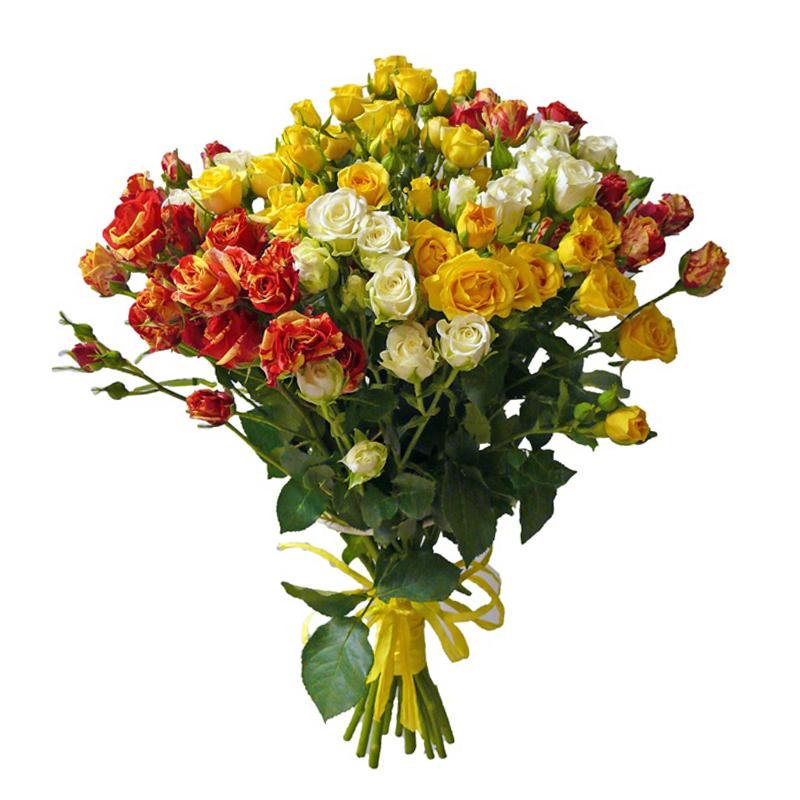 Букет из 11 разноцветных кустовых роз 60 см: букеты цветов на заказ Flowwow