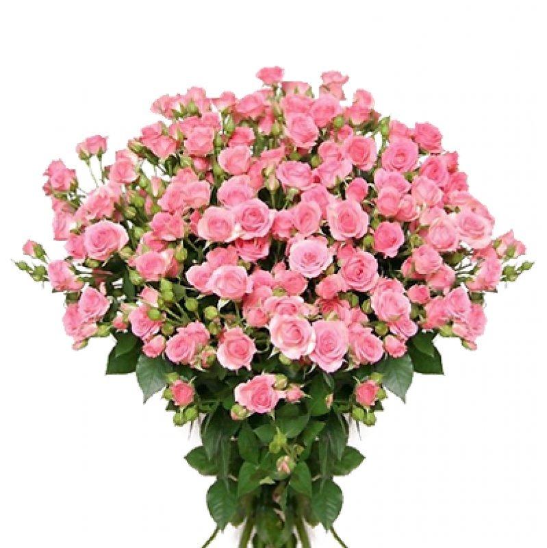 Букет из 21 розовой кустовой розы 50 см: букеты цветов на заказ Flowwow