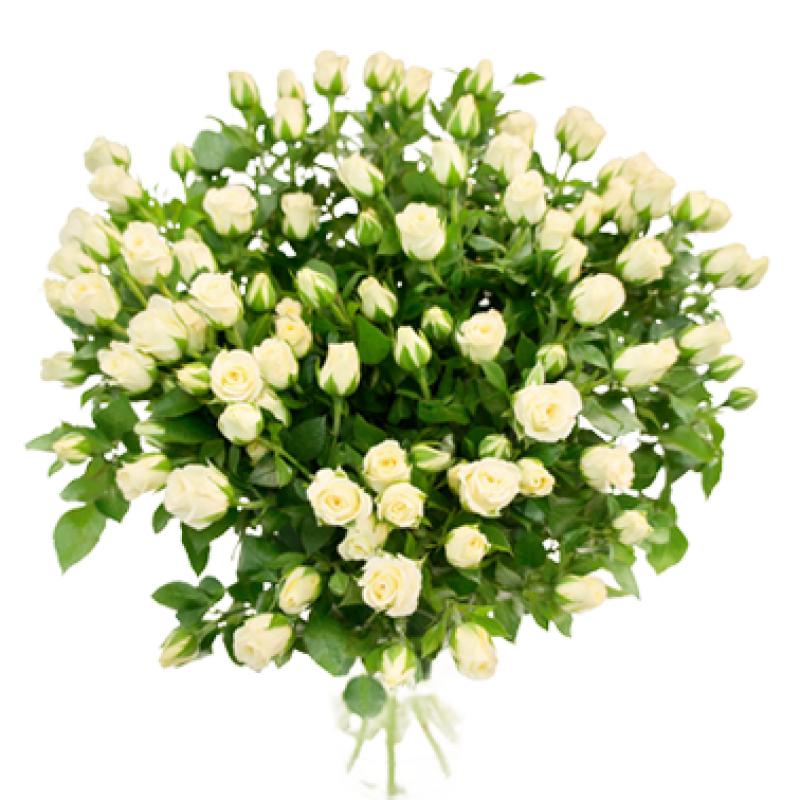 Букет из 25 белых кустовых роз 50 см: букеты цветов на заказ Flowwow