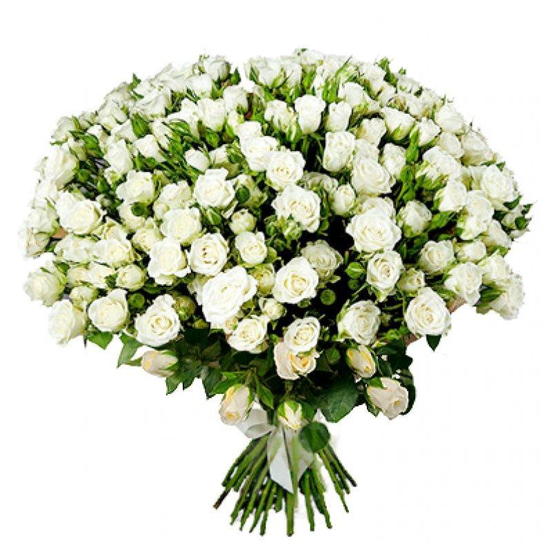 Букет из 35 белых кустовых роз 70 см: букеты цветов на заказ Flowwow