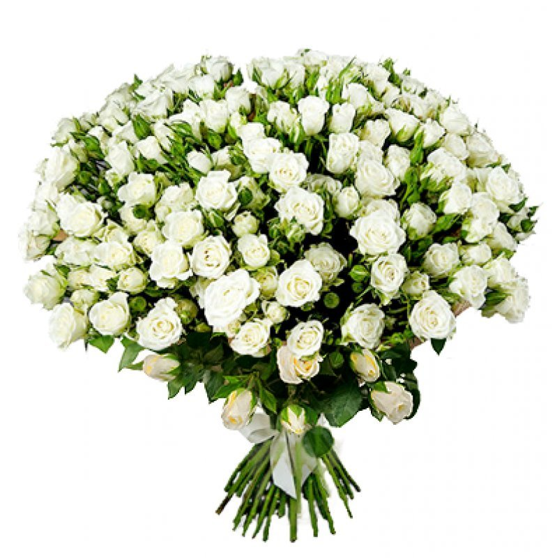 Букет из 50 белых кустовых роз 60 см: букеты цветов на заказ Flowwow