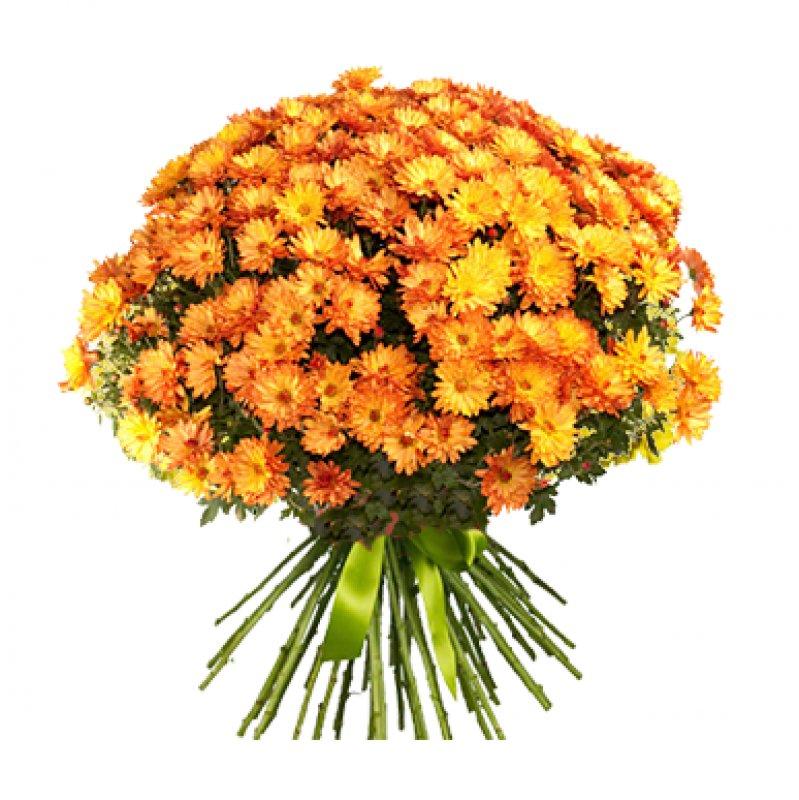 Букет из 55 желтых хризантем: букеты цветов на заказ Flowwow