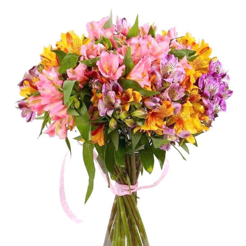 Букет из 21 разноцветной альстромерии: букеты цветов на заказ Flowwow