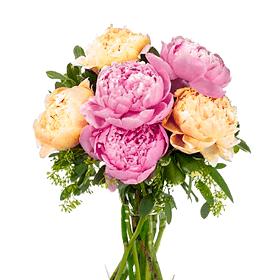 Букет из 7 разноцветных пионов: букеты цветов на заказ Flowwow