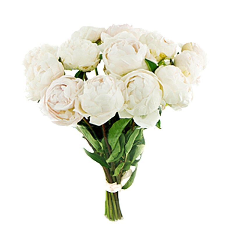 Bouquet of 11 white peonies in moscow price 1539 rub delivery for bouquet of 11 white peonies flowers to order flowwow mightylinksfo