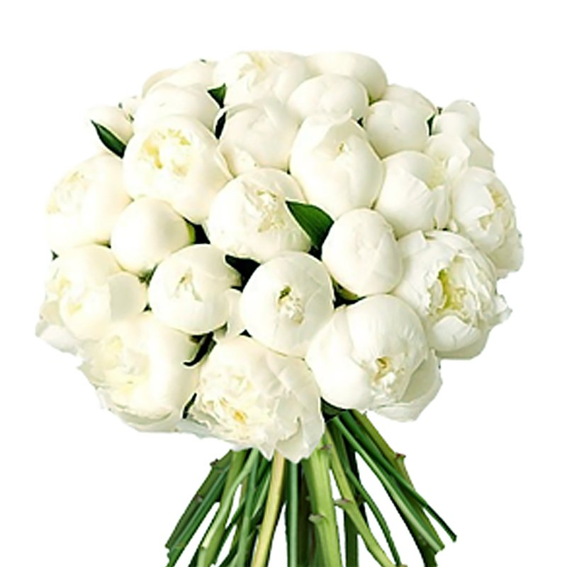 Send bouquet of 45 white peonies to moscow for 11340 rub delivery bouquet of 45 white peonies flowers to order flowwow mightylinksfo