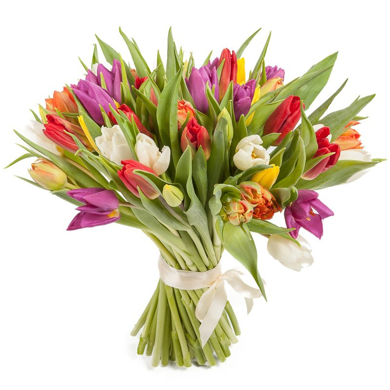 Букет из 35 разноцветных тюльпанов: букеты цветов на заказ Flowwow