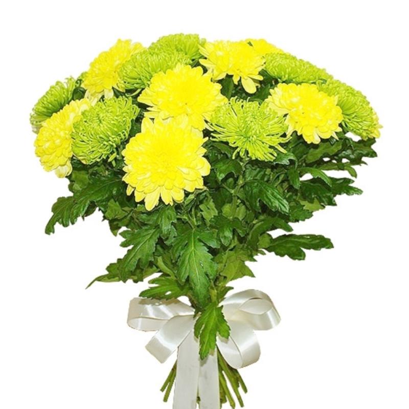 Букет из 11 желтых хризантем: букеты цветов на заказ Flowwow