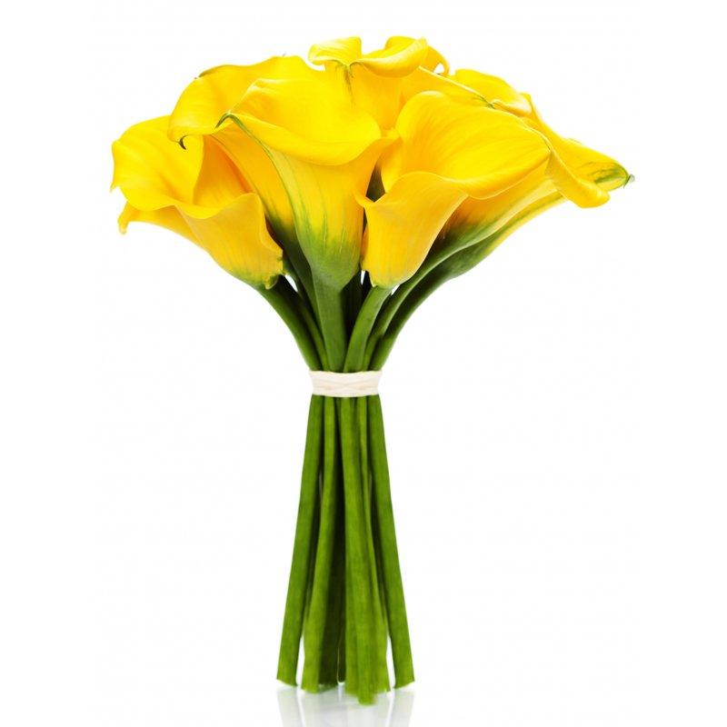 ЦветокТорг - Заказ и доставка цветов 90