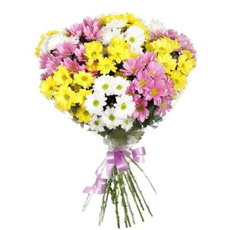 Где купить цветы дешево в москве форум заказ цветов на дом в москве